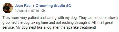 pet grooming testimonial 1
